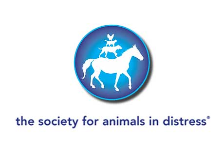 animals-in-distress